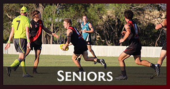 Hervey Bay Bombers - Seniors